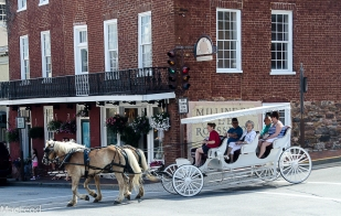Pumpkin Seeds Boutique & Carriage Ride