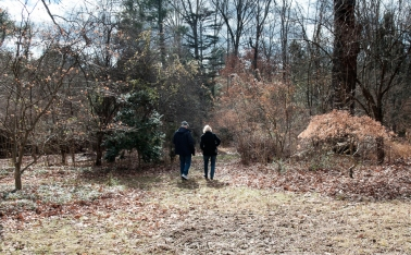 trail-photos-boxerwood-1-of-1