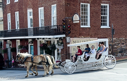 downtown carriage ride (1 of 1)